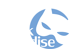 Mask Paradise Logo